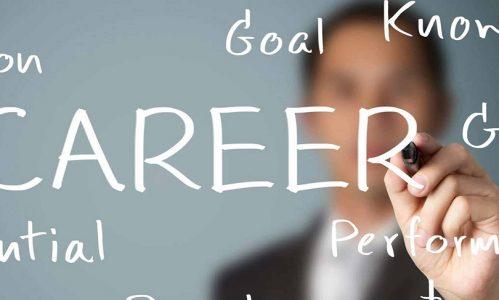 career at Milestoneplm